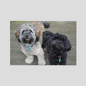 Burt&Ernie Rectangle Magnet