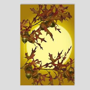 Autumn Oak Postcards (Package of 8)