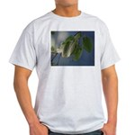 Reflected Light from the River Light T-Shirt