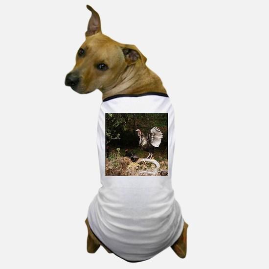 Wild Turkey Dog T-Shirt