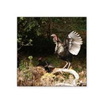 Wild Turkey Square Sticker 3