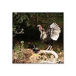 """Wild Turkey Square Sticker 3"""" x 3"""""""