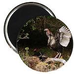 """Wild Turkey 2.25"""" Magnet (10 pack)"""