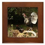 Wild Turkey Framed Tile