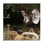 Wild Turkey Tile Coaster