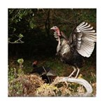 Wild Turkey Tile Coaster