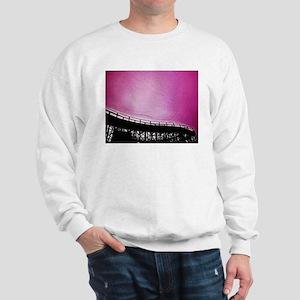 Roller Coaster in Pink Sweatshirt