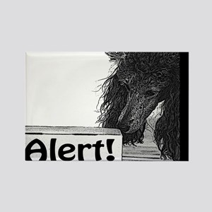 Poodle Nose work odor alert birch search Rectangle