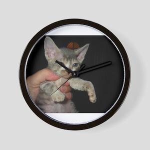 devon rex kitten Wall Clock