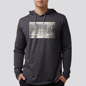 Numbers 11:12 Mens Hooded Shirt