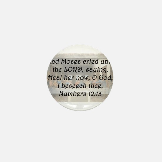Numbers 12:13 Mini Button