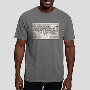 2 Peter 3:4 Mens Comfort Colors Shirt