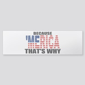 US Flag Because MERICA Thats Why Sticker (Bumper)