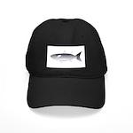 Black Mullet fish Black Cap