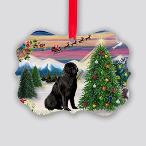Take Off/Newfie (#1) Picture Ornament