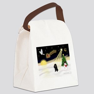 Night Flight/Poodle (Min) Canvas Lunch Bag