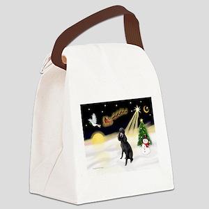 Night Flight/Poodle (Std) Canvas Lunch Bag
