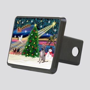 XmasMagic/Xolo (#2) Rectangular Hitch Cover