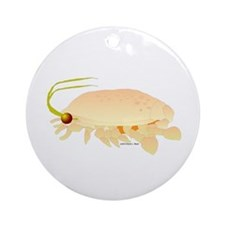 Mole Shrimp Sand Crab Sand Flea Ornament (Round)