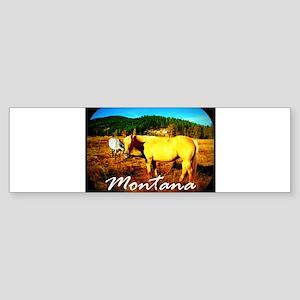 Montana Horse Sticker (Bumper)