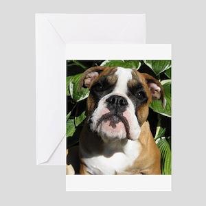 Bulldog Pup Greeting Cards (Pk of 10)