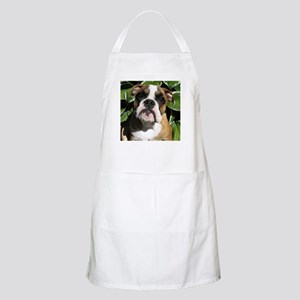 Bulldog Pup BBQ Apron