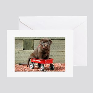 Lab Puppy in a Red Wagon Greeting Cards