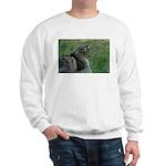 Summer Days Sweatshirt