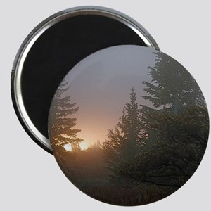 Misty mornings Magnet