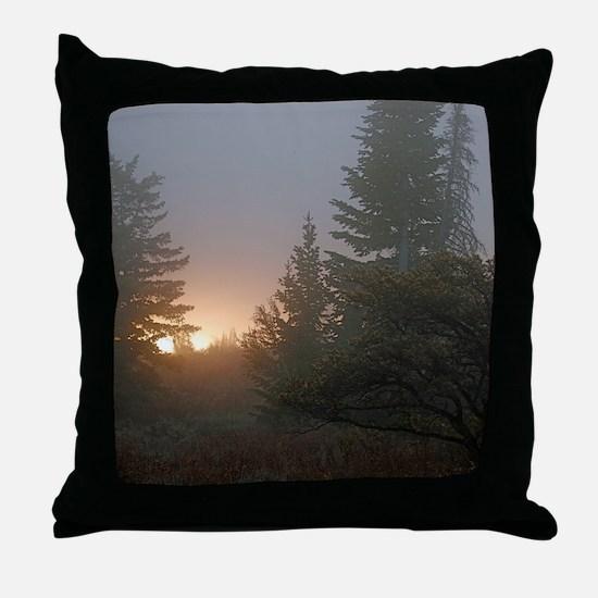 Misty mornings Throw Pillow