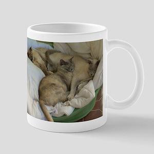 Burmese Cats asleep Mug