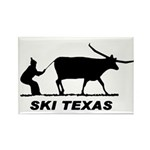 Ski Texas Rectangle Magnet (100 pack)