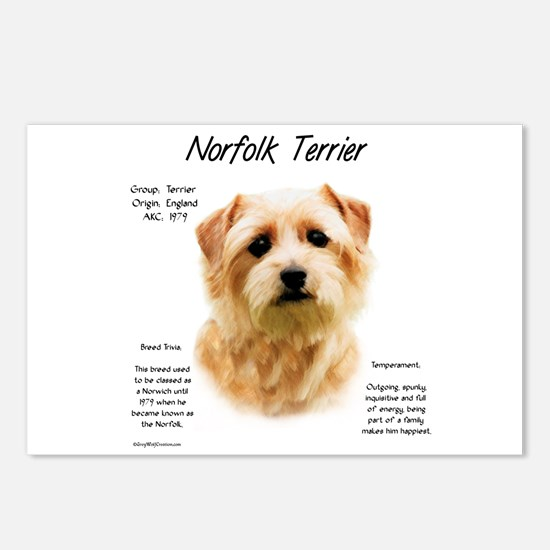 Norfolk Terrier Postcards (Package of 8)
