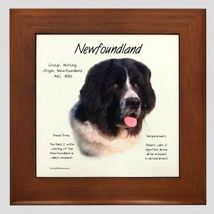 Newf (Landseer) Framed Tile