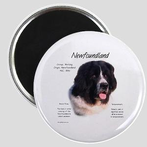 Newf (Landseer) Magnet