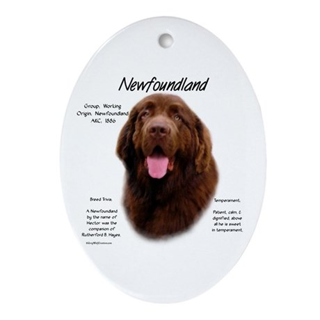 Newfoundland (brown) Oval Ornament