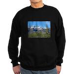 Superstition Peak Snow Sweatshirt (dark)
