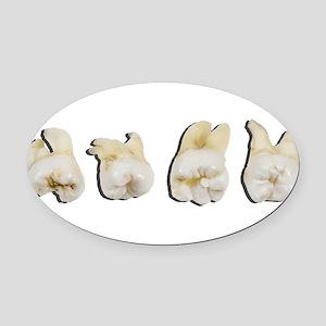 Wisdom Teeth Oval Car Magnet