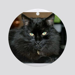 Charlie the black Maine Coon Cat Ornament (Round)