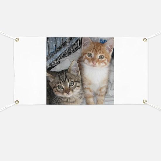 Orange Tabby Cat Banner