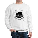 Party Like It's Rumspringa Sweatshirt