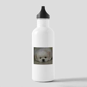 Pekingese Puppy Stainless Water Bottle 1.0L