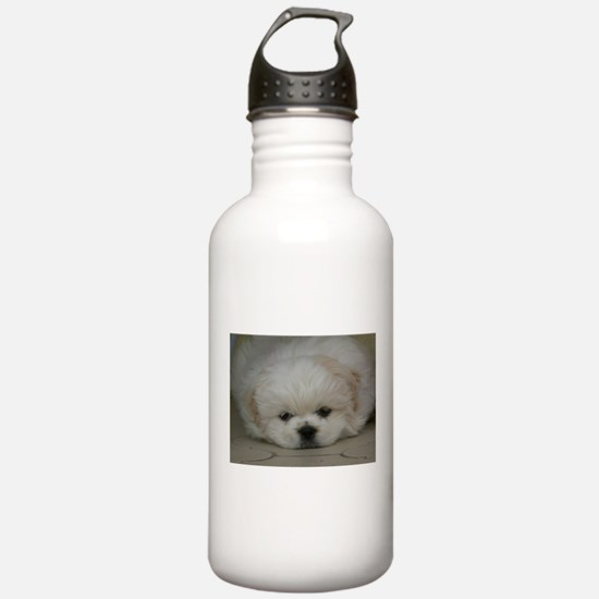 Pekingese Puppy Water Bottle