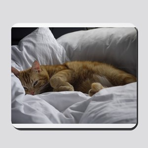 Afternoon Snooze Mousepad