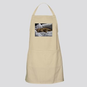 Afternoon Snooze Apron