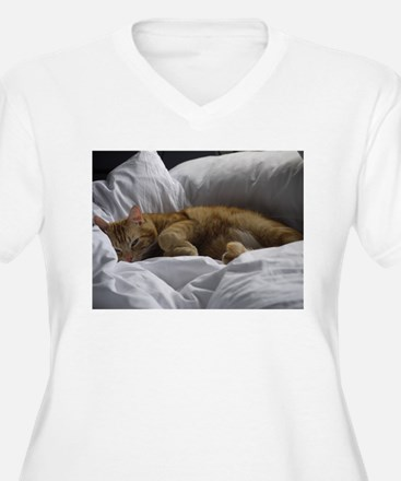 Afternoon Snooze T-Shirt