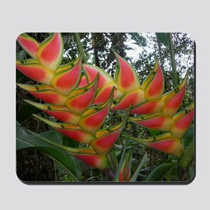 Heliconia Mousepad
