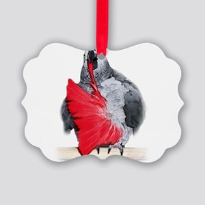 african grey, parrot Picture Ornament
