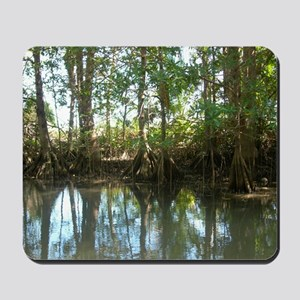 Mangrove Forest Mousepad
