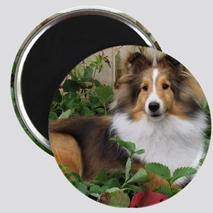 Strawberry Patch Magnet